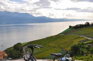 winnice Lavaux, Jezioro Genewskie i Alpy Francuskie po drugiej stronie