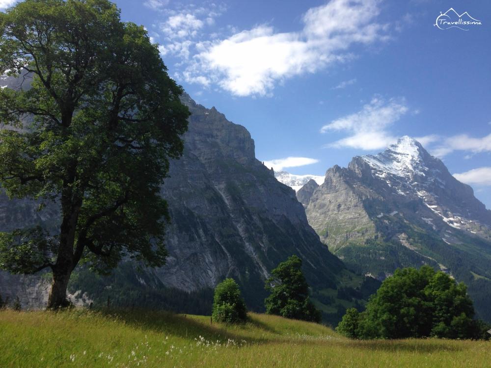 EigerUltraTrail_Switzerland_Anna_Kedzierska-1601
