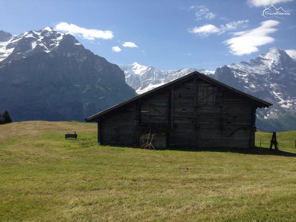 EigerUltraTrail_Switzerland_Anna_Kedzierska-1625