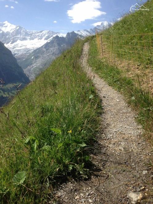 EigerUltraTrail_Switzerland_Anna_Kedzierska-1626