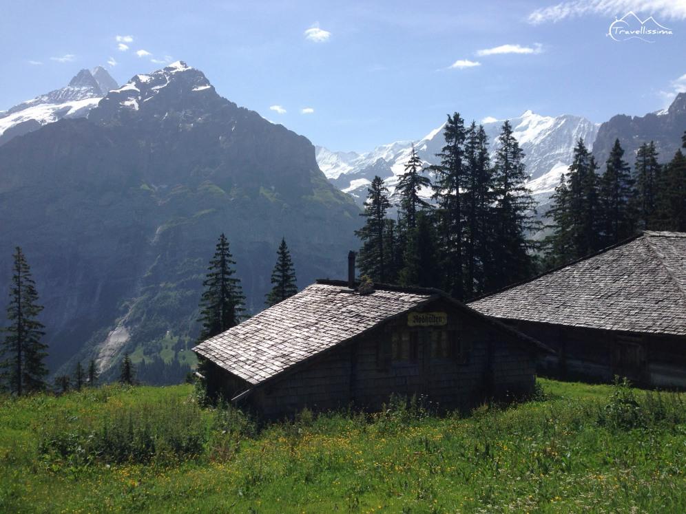 EigerUltraTrail_Switzerland_Anna_Kedzierska-1631