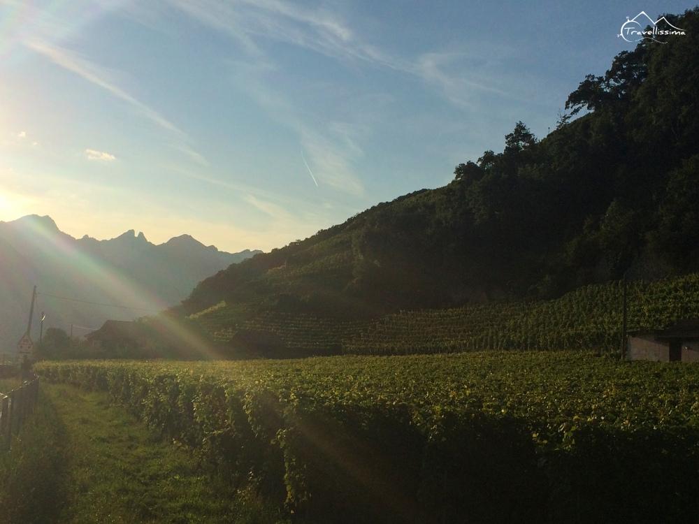 Les_Diablerets_Switzerland_Anna_Kedzierska-0874