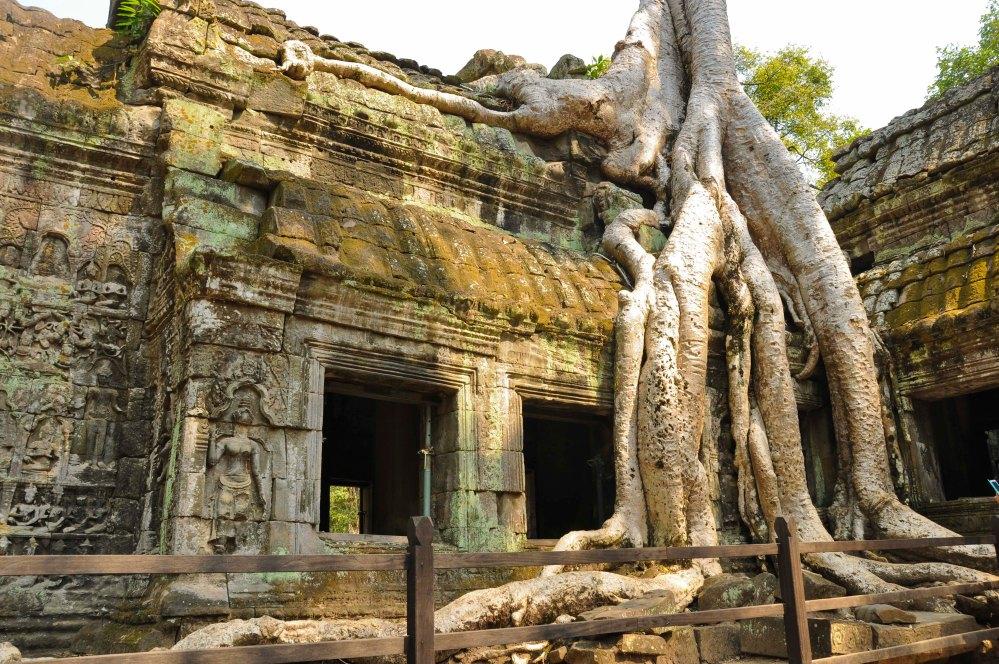 Cambodia_Anna_Kedzierska-1163