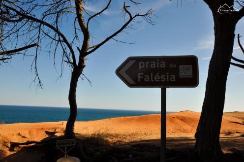 4.2 Praia da Falesia (45)