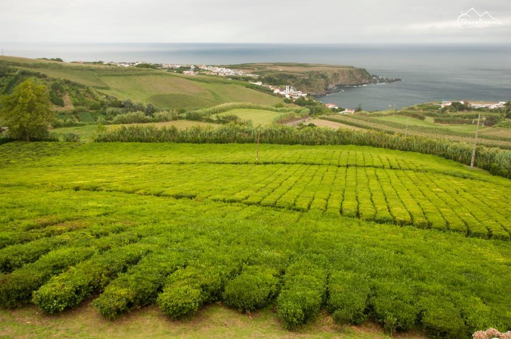 Azores_Anna_Kedzierska_Travellissima-0334