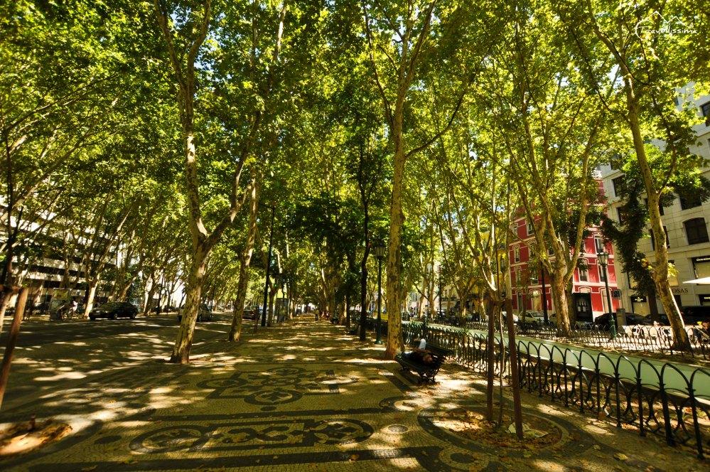 Lisbon_Anna_Kedzierska_Travellissima-14