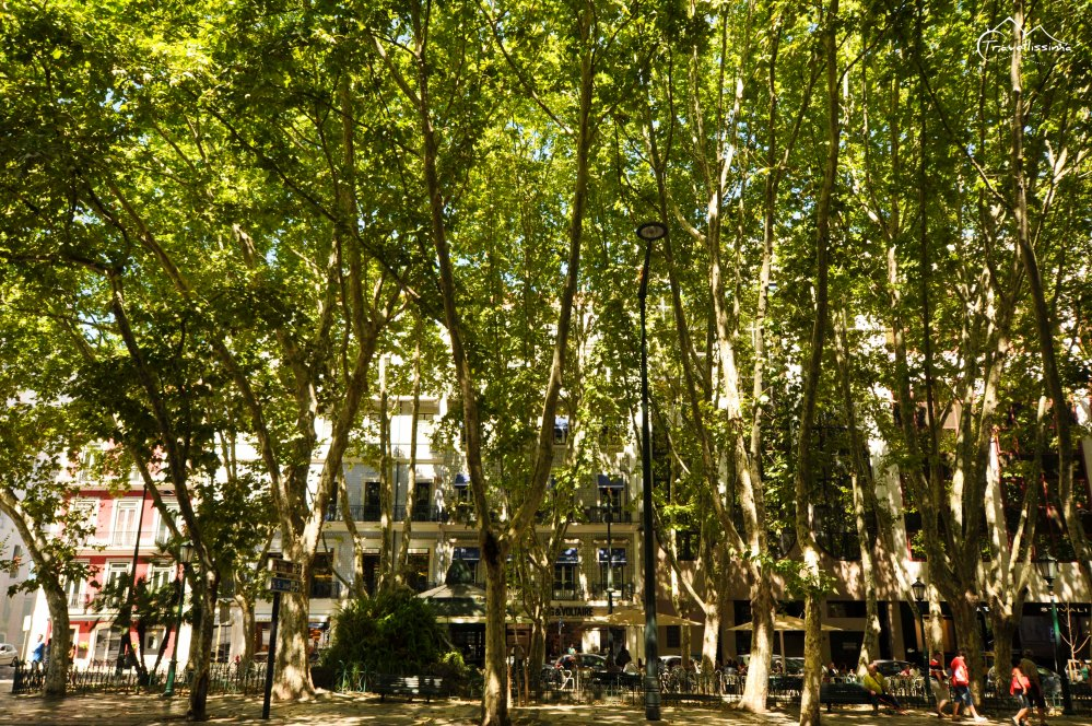 Lisbon_Anna_Kedzierska_Travellissima-15