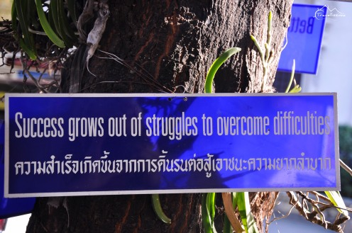 Chiang_Mai_Anna_Kedzierska_Travellissima-0309