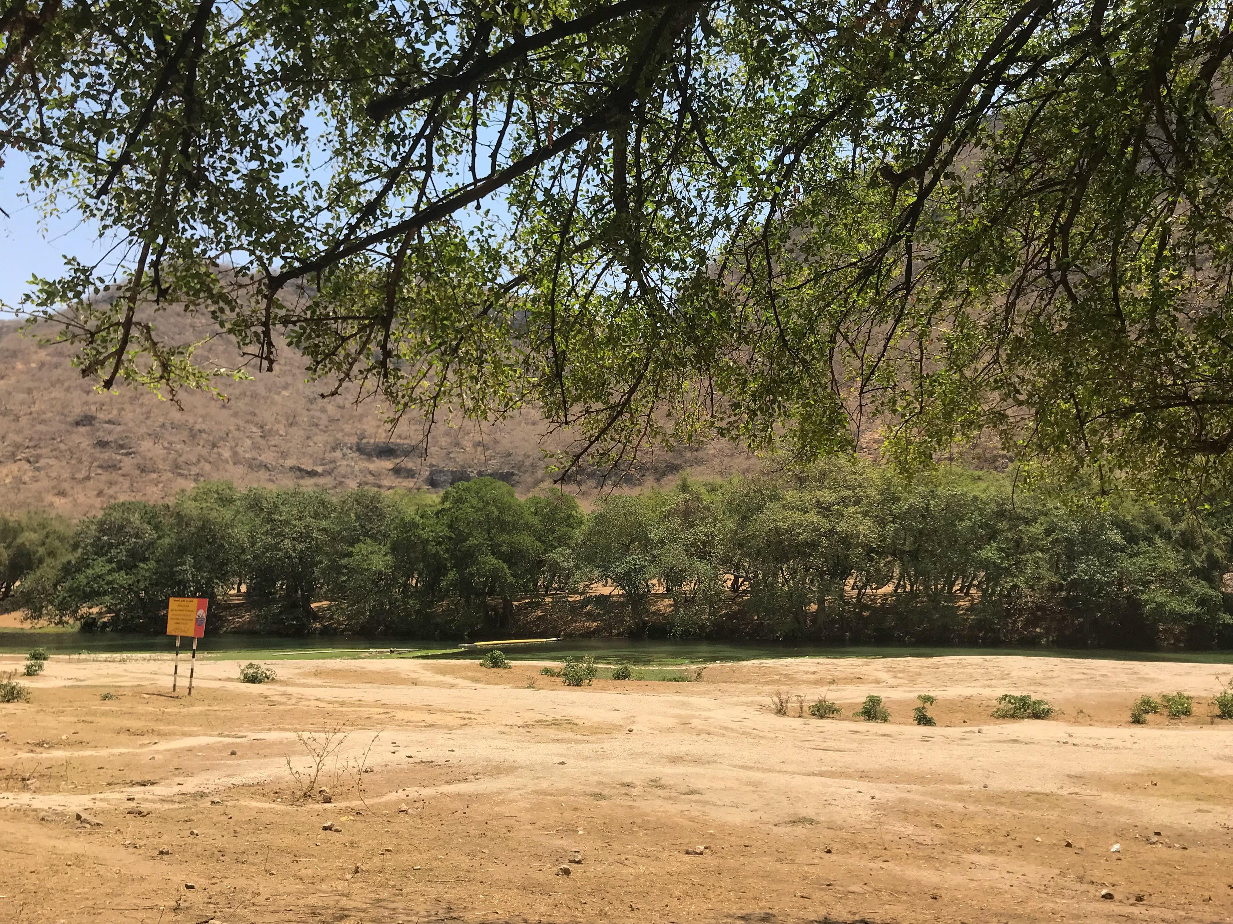 Wadi  Darbat Oman